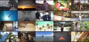 Hawai'i Safety Protocol Video