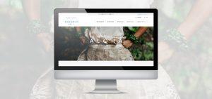 Hawai'i Covid-19 Information Website