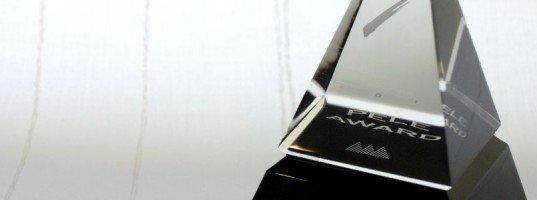 Peles Award 2010