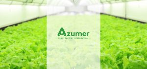 azumer logo over image of lettuce