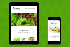 azumer website on tablet and smartphone