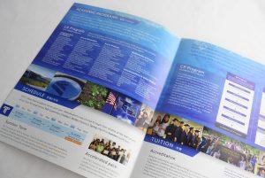 Tokai brochure