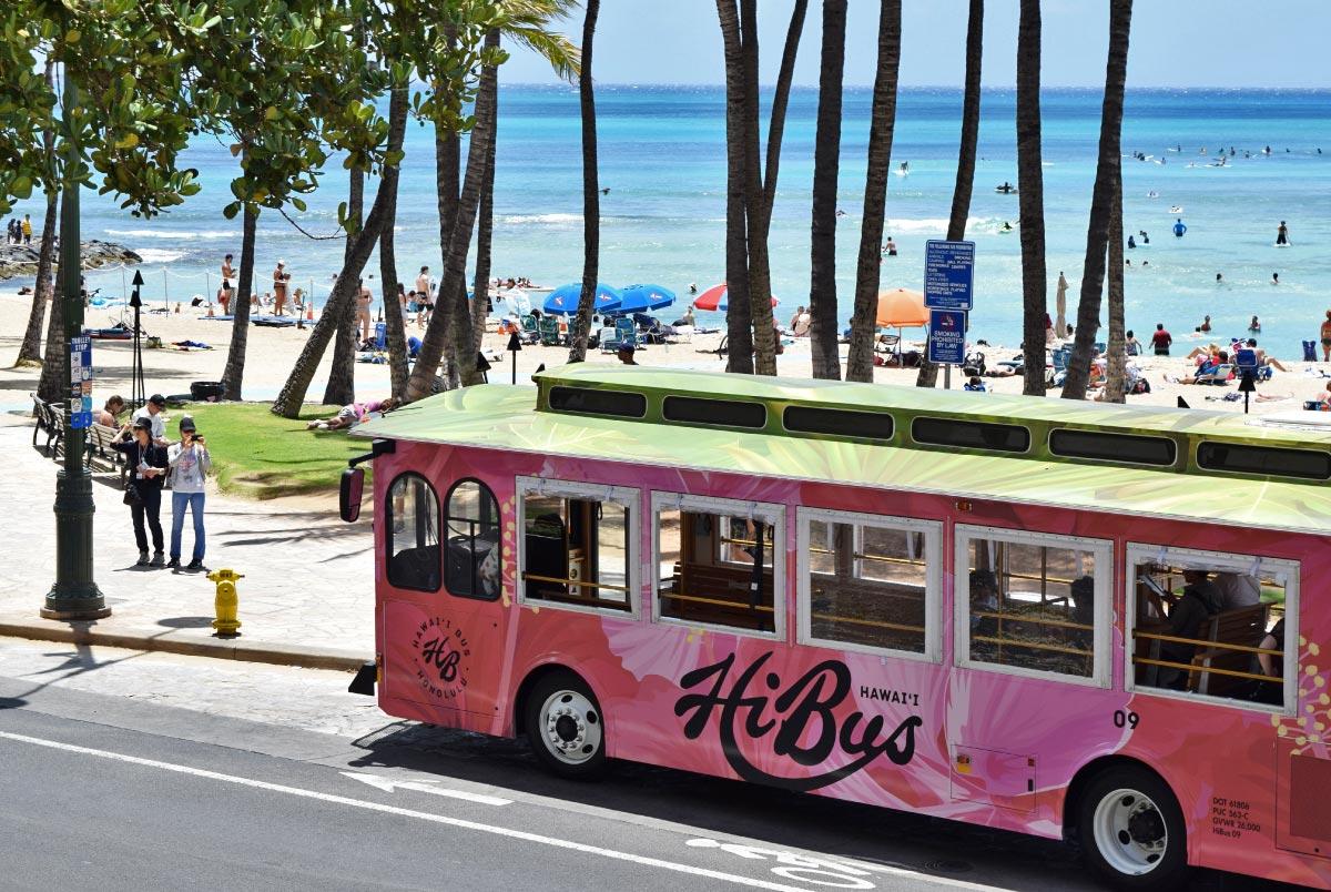HiBus Hibiscus Trolley