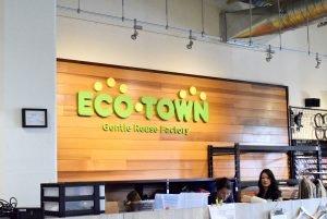 Eco Town Primary Logo Signage