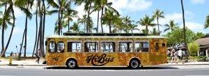 HiBus Trolley